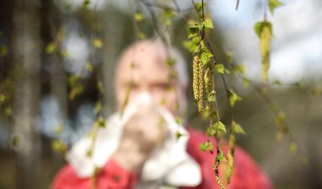 hur vet man om man är allergisk